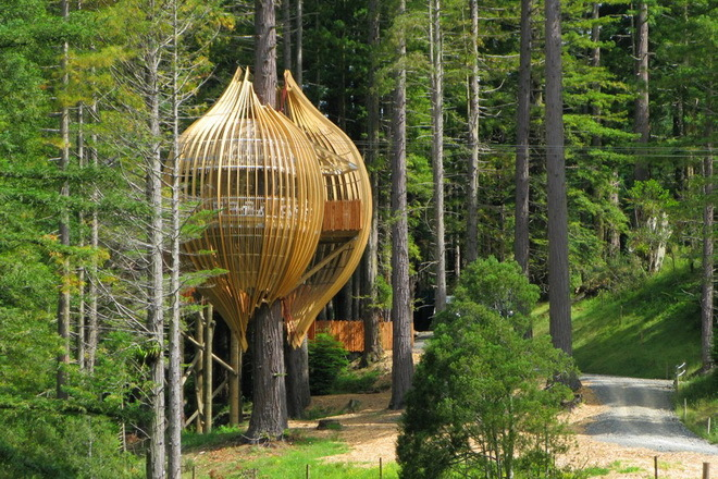 Yellow Treehouse – ресторан на дереве